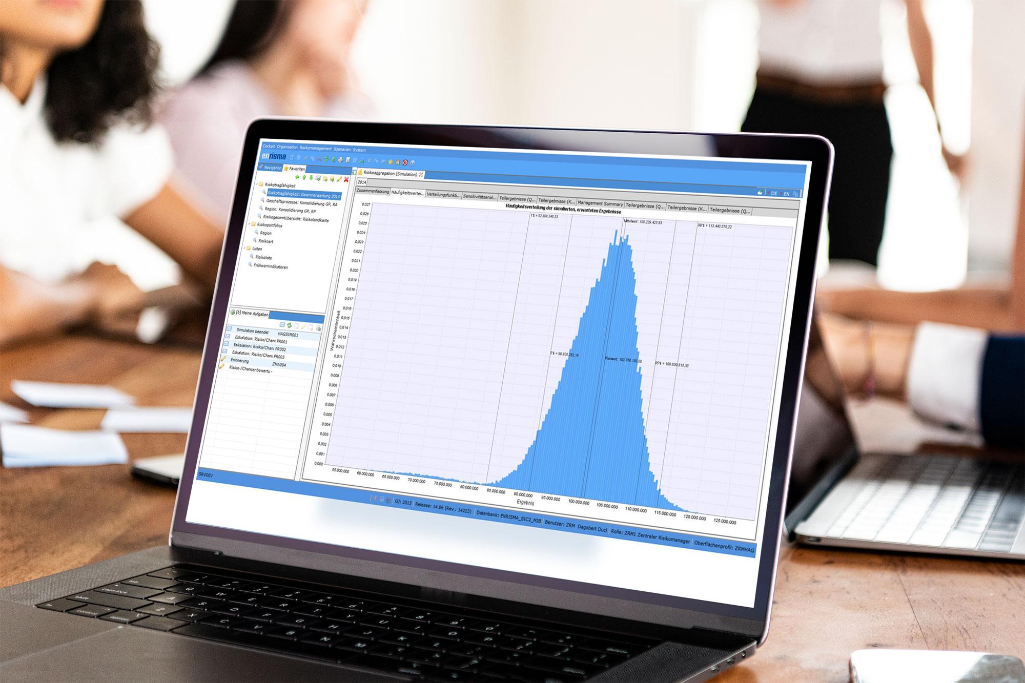enrisma Risikomanagement Software - Häufigkeitsverteilung